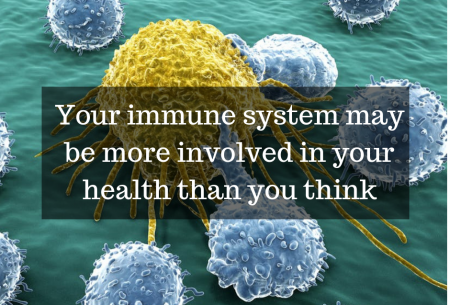 Your immune system may be more involved in your health than you think