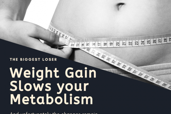 The Biggest Loser - Weight Gain Slows your Metabolism - And unfortunately the changes remain even after you lose the weight
