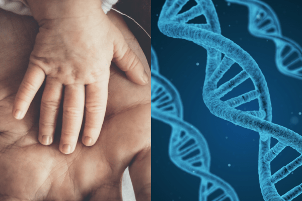 Image of Baby Hand vs DNA