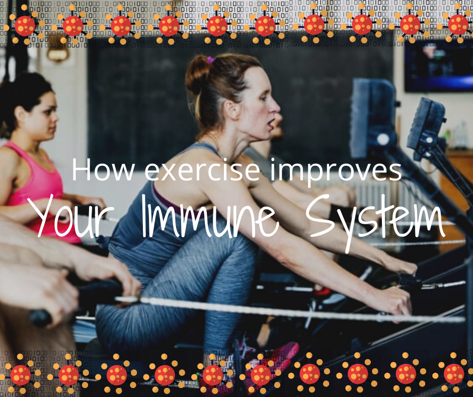 How Exercise Improves our Immune System
