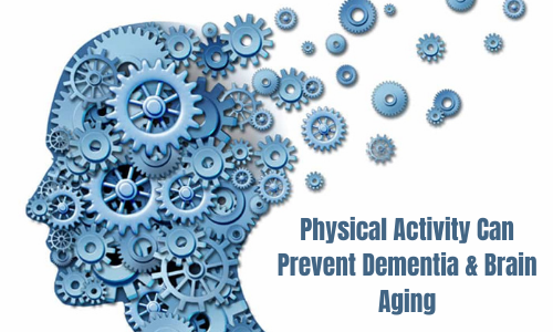 Physical Activity Can Prevent Dementia and Brain Aging